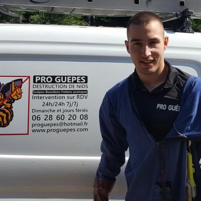 Marc Niquet gérant entreprise Pro Guêpes destruction nid de guêpes et frelons dans l'oise et le val d'oise